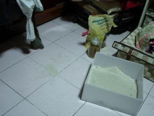 滿地的貓砂